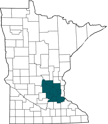 Network technicians in Minnesota